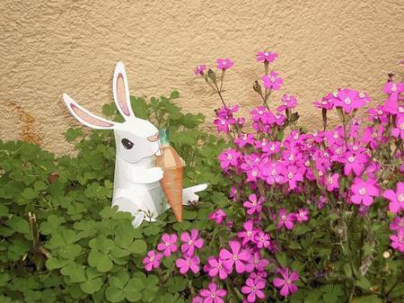 Conejo entre las flores